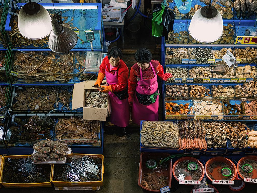 Picture of vendors at the Noryangjin Fish Market in Seoul, South Korea