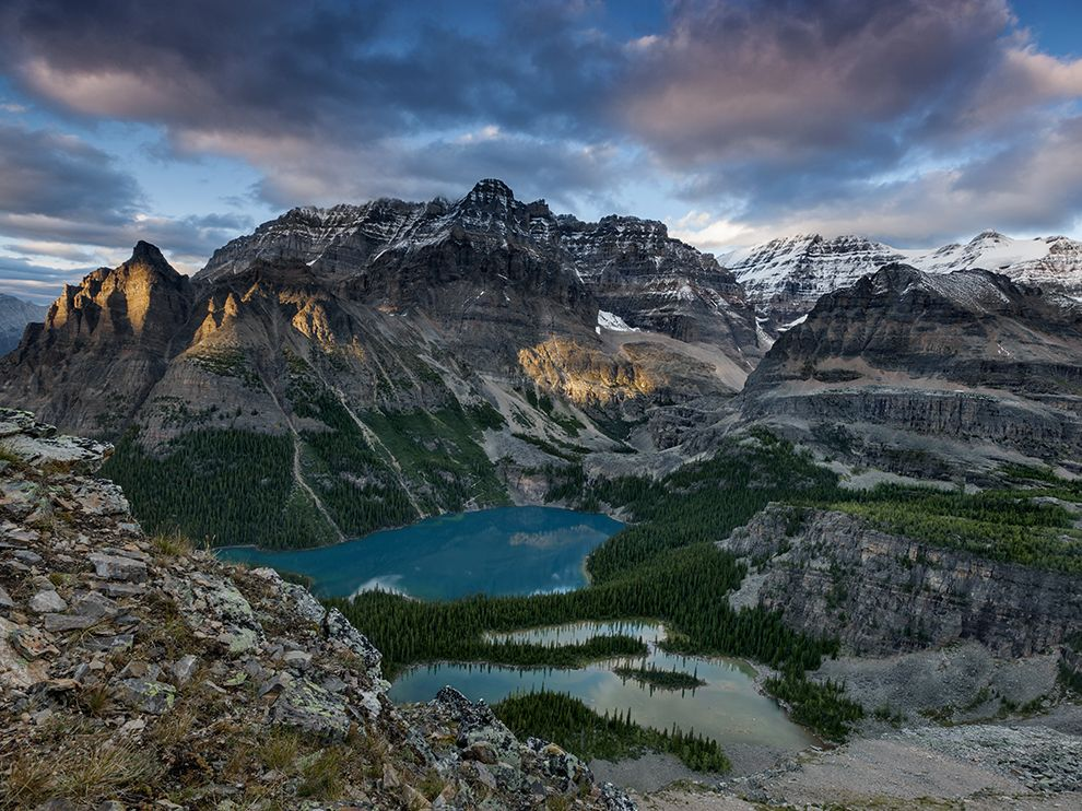 Picture of Lake O'Hara in the Canadian Rockies