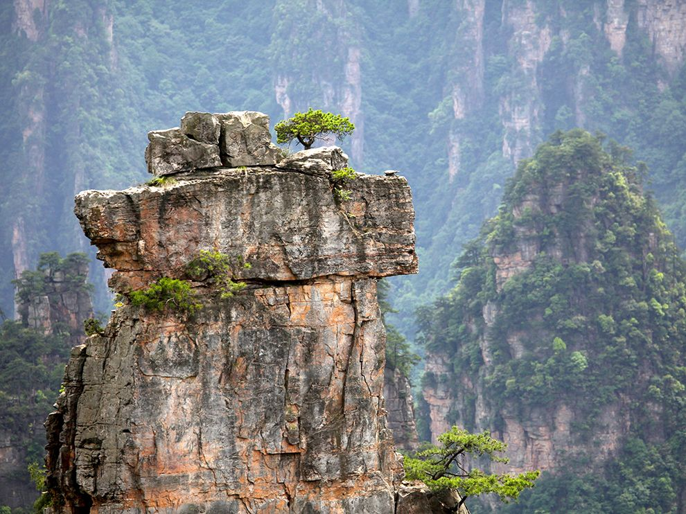 Picture of a lone tree on a pillar of rock, Zhangjiajie National Forest Park, China